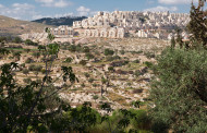 Settlements continue to be built in Palestine